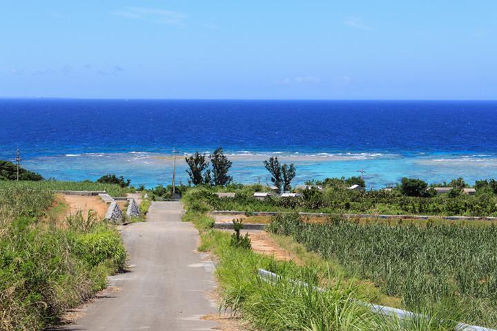可以从高台独自眺望这绝佳景色「PANORAMA OCEAN VIEW COTTAGE」(本部町)
