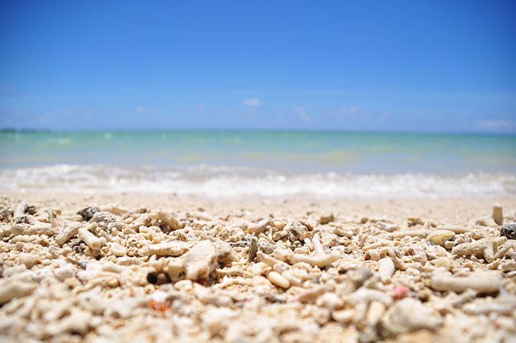 交通便利的冲绳大海!从那霸出发1小时以内可以到达的绝佳景色海滩 5选